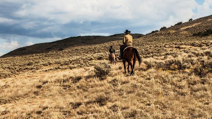 دانلود فصل اول سریال Yellowstone